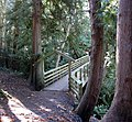 Wood bridge over Millstream Creek - panoramio.jpg