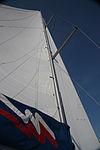 Yacht mainsail and jib, mast, cross trees, backstays.jpg