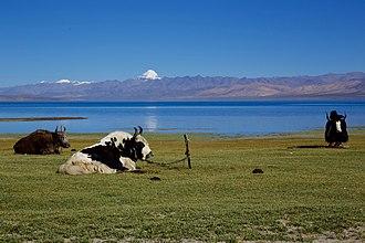 Lake Manasarovar - Lake Manasarovar with Mount Kailash in a distance.