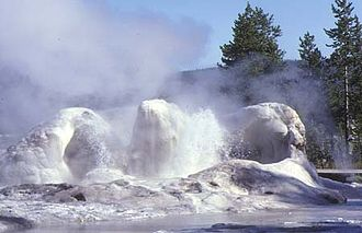 Grotto Geyser - Image: Yellowstone Geyser Grotto 10