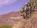 Zapopan, Jalisco, Mexico - panoramio (6).jpg