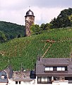 Zell vineyards and Tower.jpg