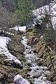 Zellboden- Gebirgsbach - geo.hlipp.de - 10371.jpg