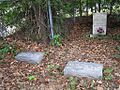 Zion CME Church Cemetery Raines Rd Memphis TN 004.jpg