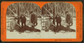 """""""There's where I hit 'im."""", from Robert N. Dennis collection of stereoscopic views.png"""