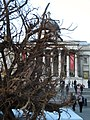 'Ghost Forest' and the National Gallery, Trafalgar Square - geograph.org.uk - 1587455.jpg
