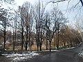 Újhegy Park east, 2018 Kőbánya.jpg