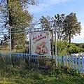 Ай да рыжик, Верх-Юсьва, Пермский край - panoramio (1).jpg