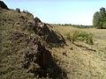 Балка Північна Червона 06.jpg