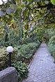 Ботанічний сад НУБіП 001.jpg