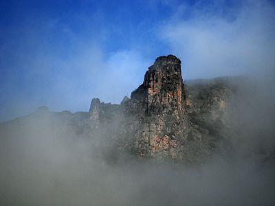 В мъглата край х. Мальовица.jpg