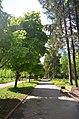"""Дендропарк """"Подолье"""" город Хмельницкий. Фото 29.jpg"""
