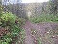 Дорога в пещеру - panoramio.jpg