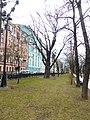 Дуб на Тверском бульваре (Пушкинский дуб).jpg