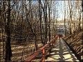 Парк на Воробьевых горах - panoramio (1).jpg