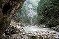 Река Курджипс, Гуамское ущелье, Западный Кавказ.jpg