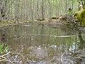 Самево Езеро (Езерче) 01.jpg