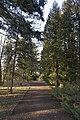 Сирецький дендрологічний парк 38.jpg