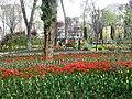 Скверы Душанбе 8.jpg