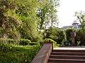 Сквер з різно- видностями рідкісних дерев,.JPG