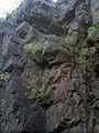 Скелі МоДРу - 09.jpg