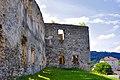 Чортків - Замок Гольських - 237.jpg