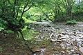 奥新川 - panoramio (6).jpg