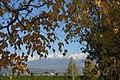 富田ファームの富良野岳 - panoramio (1).jpg