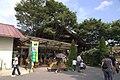 平田観光農園 - panoramio.jpg