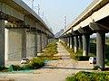 未央 西安机场线渭河桥下河堤路旁 02.jpg