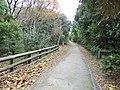 東京港野鳥公園 - panoramio (19).jpg