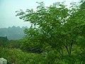 桂林市冠岩郊区景色 - panoramio (4).jpg