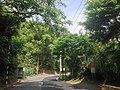 通往阿姆坪土地公廟附近的環湖路二段380巷與溪尾坪公車亭.jpg