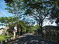 08682jfSan Luis Candaba, Pampanga Baliuag Bulacan Roadfvf 21.jpg