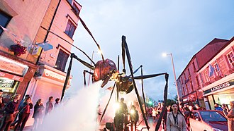 Galway International Arts Festival - Image: 101insects giaf 2016