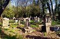 1413aviki Cmentarz żydowski przy ul. Lotniczej. Foto Barbara Maliszewska.jpg