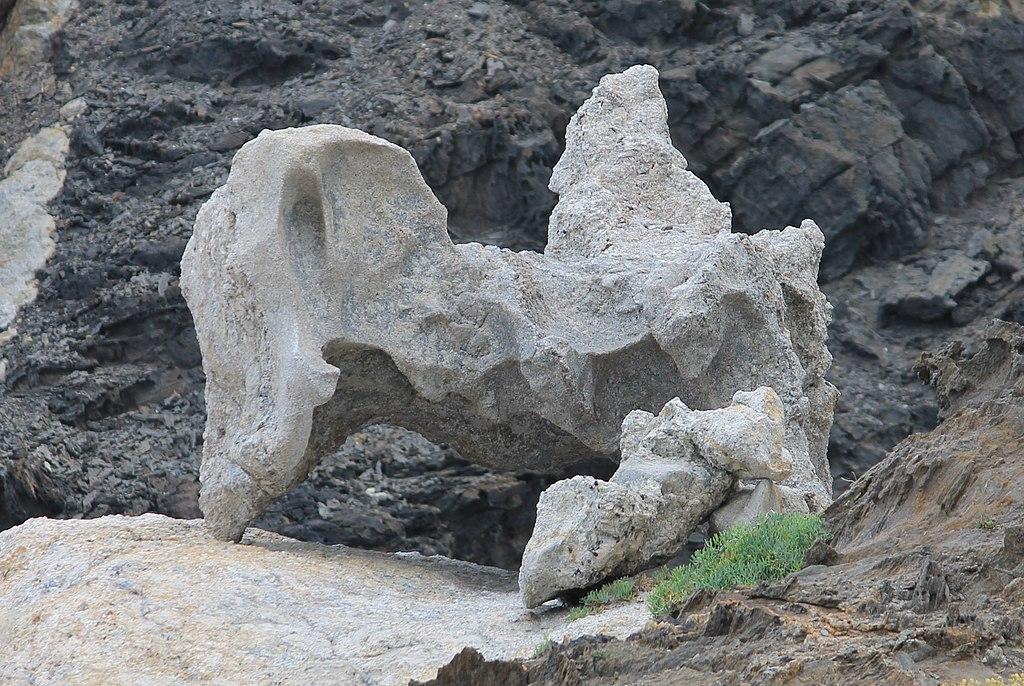 Cap Creus Natural Park