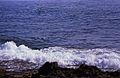 164Zypern Coral Bay (14087683772).jpg