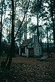 1981-12-Charleston Drayton Hall 010-ps.jpg
