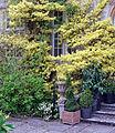 1992 Barnsley House Rosemary Verey Gloucestershire, England 5.jpg
