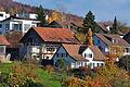 2011-11-06 14-40-09 Switzerland Kanton Schaffhausen Dörflingen, Underberg.jpg