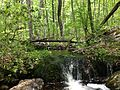 2013-05-12 12 46 56 Stream along the Wanaque Ridge Trail in Ramapo Mountain State Forest.JPG
