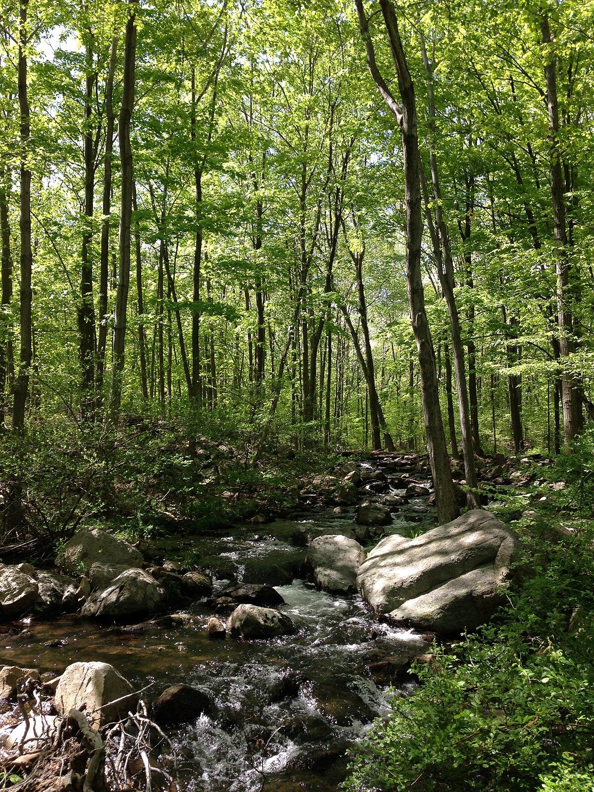 Ramapo Mountain State Forest - Wikipedia