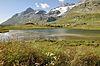 2013-08-05 07-27-38 Switzerland Kanton Graubünden Ospizio Bernina Bernina Hospiz