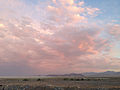 2014-06-10 20 08 29 Clouds lit by the waning light of a sunset in West Wendover, Nevada.JPG