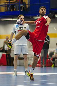 20170114 Handball AUT SUI DSC 9715.jpg