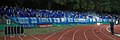 2018-08-17 1. FC Schweinfurt 05 vs. FC Schalke 04 (DFB-Pokal) by Sandro Halank–495.jpg