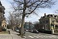 2020 Mellen Street Cambridge Massachusetts US.jpg