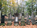 251012 Details of tombstones at Jewish Cemetery in Warsaw - 78.jpg
