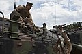 2D Transportation Support Battalion provides fuel for 2nd Amphibious Assault Battalion 150311-M-EA576-213.jpg